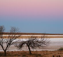 Salt Flats Simpson Desert,S.A. by Joe Mortelliti