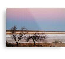 Salt Flats Simpson Desert,S.A. Metal Print