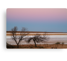 Salt Flats Simpson Desert,S.A. Canvas Print
