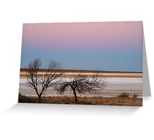 Salt Flats Simpson Desert,S.A. Greeting Card