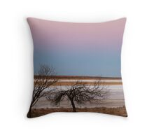 Salt Flats Simpson Desert,S.A. Throw Pillow