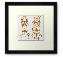 Insect Design Framed Print