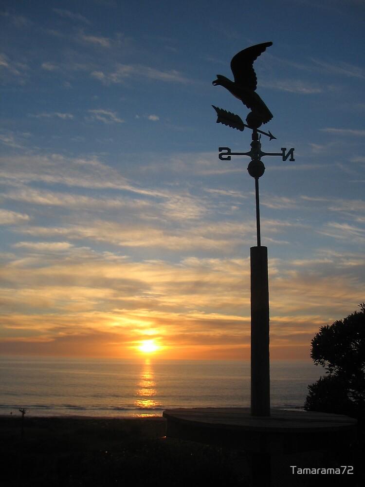 Carrickalinga Sunset  by Tamarama72