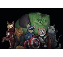 The Catvengers Photographic Print