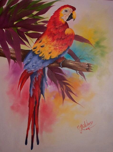 Exotic Macaw by Micheal Giddens