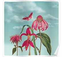 Raspberry Pink Flowers with Turquoise Sky Poster