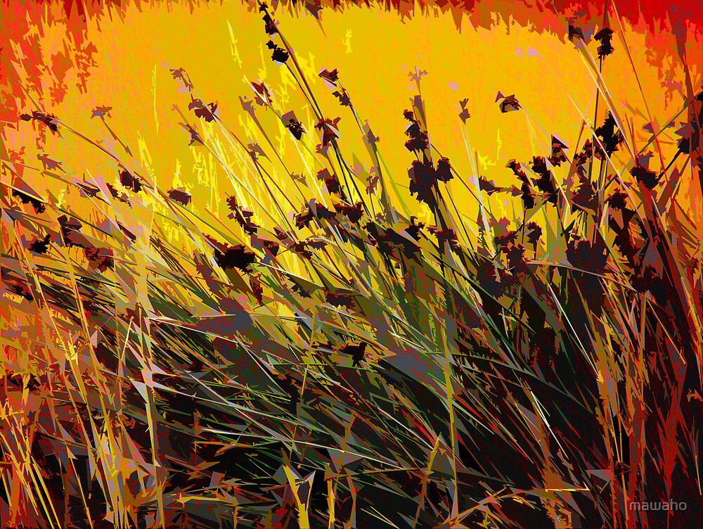 Designer Grass by mawaho