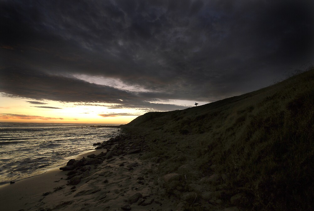 Lonely Surfer by Russell Hammond