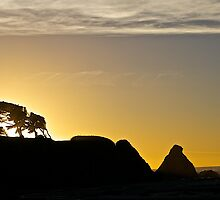 Coastal Silhouettes by John Butler