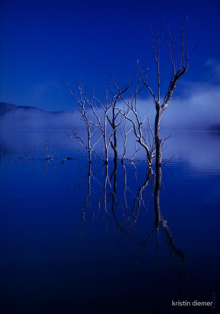 blue water 23 by kristin diemer