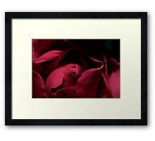 Roses are... Framed Print