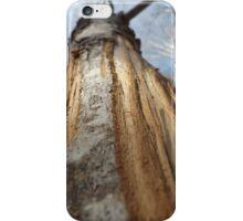 Moose Maple iPhone Case/Skin
