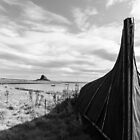 Lindisfarne View. by Dave Staton