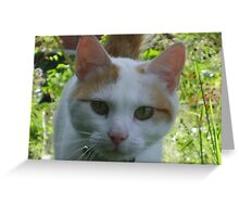 Cat in the Jungle Greeting Card