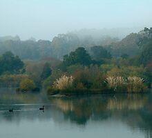 Morning, Lake Daylesford by Joe Mortelliti