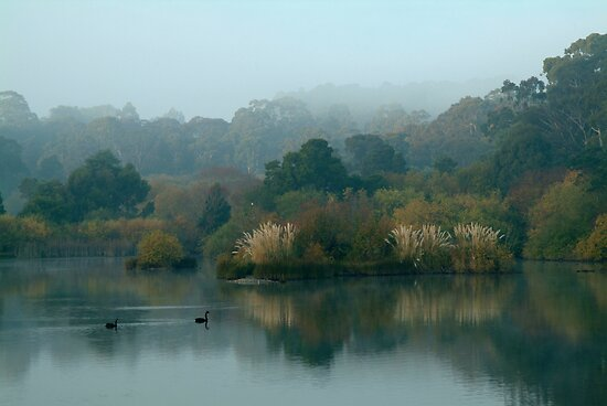 Morning, Lake Daylesford by Joe Mortelliti