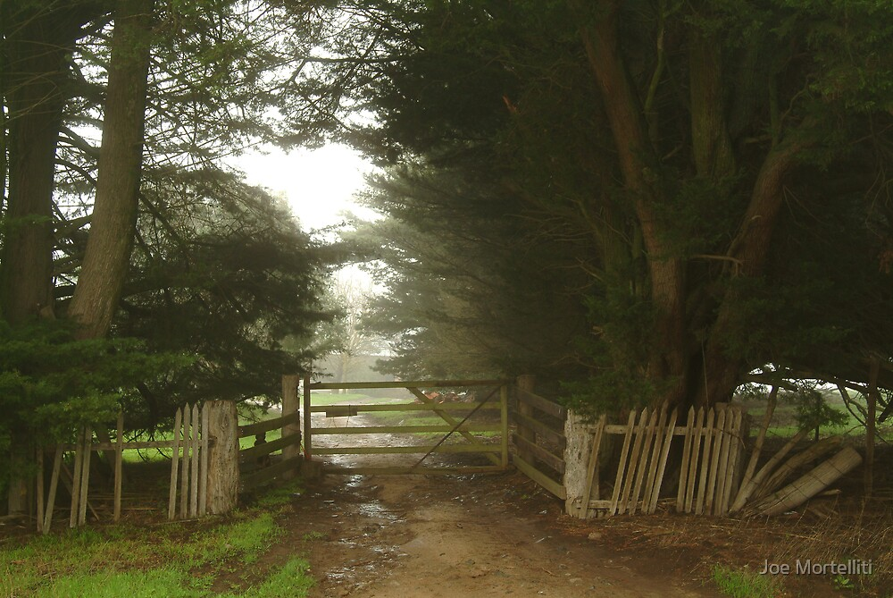 Farm Entrance by Joe Mortelliti