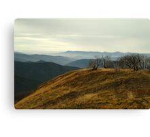 Top of Mt Blue Rag,High Country Canvas Print
