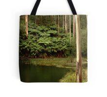 Billabong, Otway Ranges Tote Bag