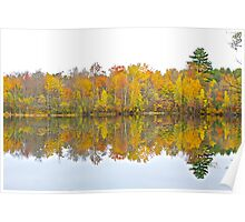 Autumn Shoreline Poster