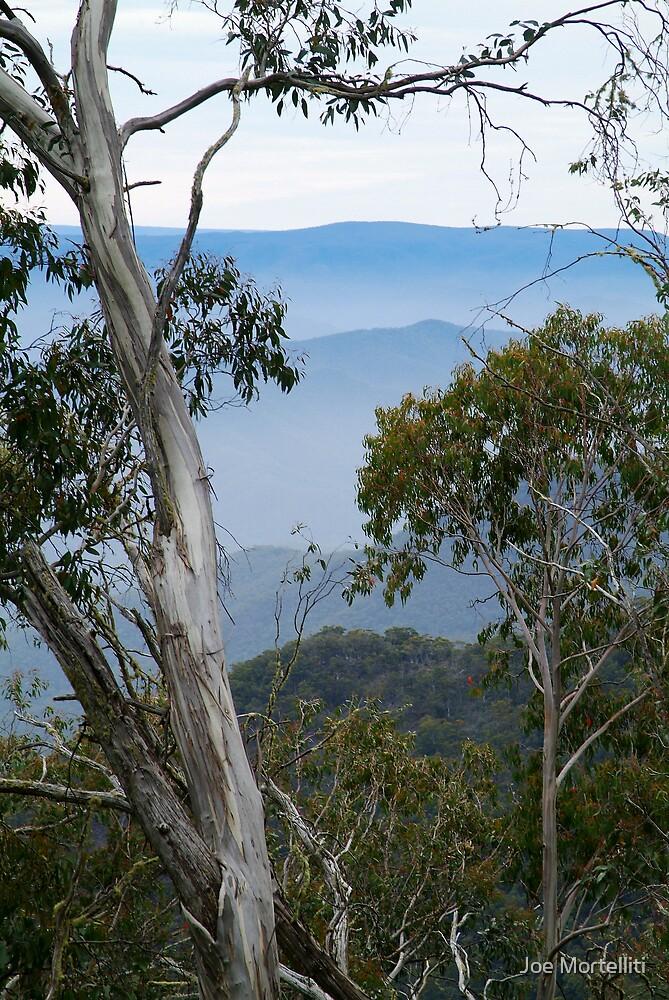High Country Fog Layers by Joe Mortelliti