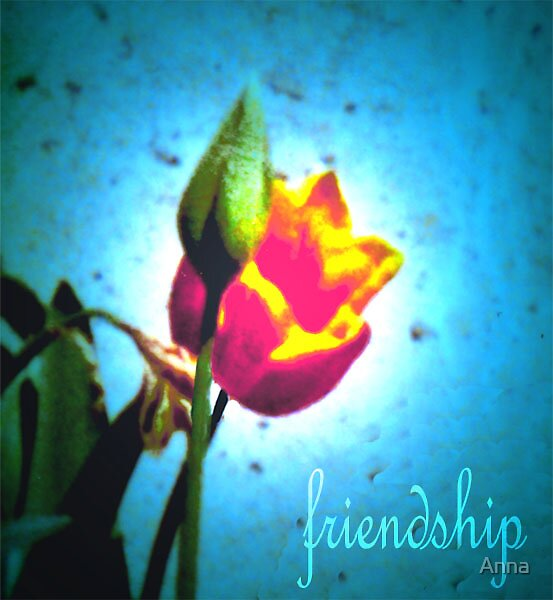 'friendship' 2004 by Anna