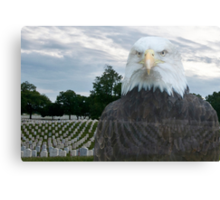 Honor Our Veterans on 11/11/14 Canvas Print