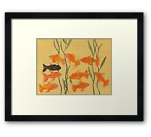 8 Goldfish & 1 Black Framed Print