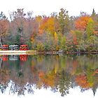 Autumn on the Lake by John Butler