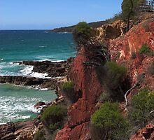 Pambula Beach  by Darren Stones