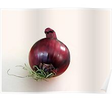 A red onion Poster