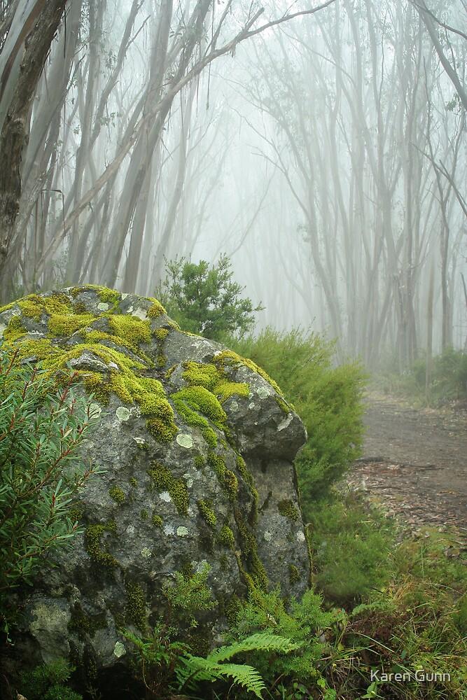 Lake Mountain Mist  by Karen Gunn