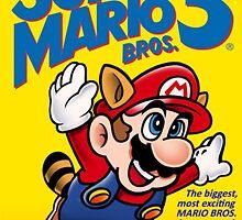 Super Mario Bros 3 by thevillain