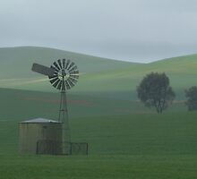 Misty Rain Southern Flinders Ranges by Joe Mortelliti