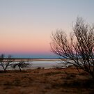 Salt Pan, Simpson Desert, S.A. by Joe Mortelliti