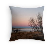 Salt Pan, Simpson Desert, S.A. Throw Pillow