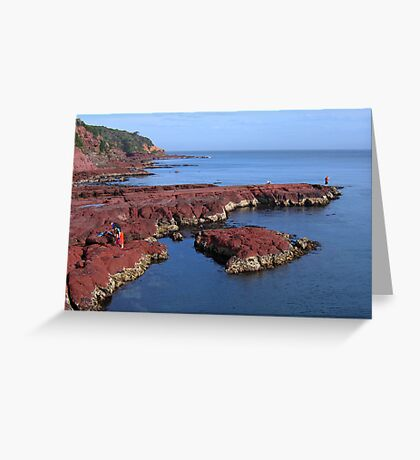 Merimbula Long Point Greeting Card