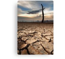 The Big Dry Canvas Print