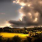 Umbria Hills by Paul Vanzella