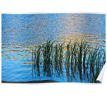Water, Reeds and Sunset Poster