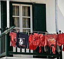 Laundry Day by KSKphotography