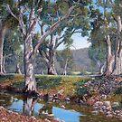 Willochra Creek , Southern Flinders by Susan Borgas