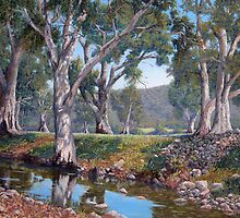 Willochra Creek , Southern Flinders by Susan Borgas
