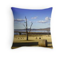 Make Hay While the Sun Shines Throw Pillow