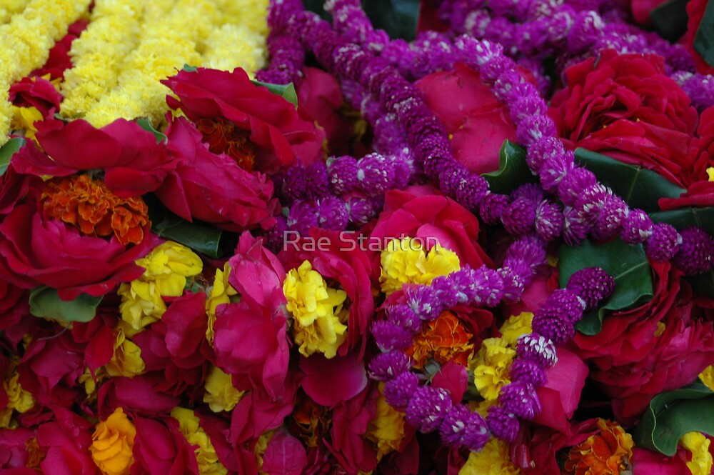 flower offerings vrindavan by Rae Stanton
