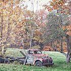 Classic Autumn by Richard Bean