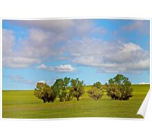 Trees in a Springtime Meadow Poster