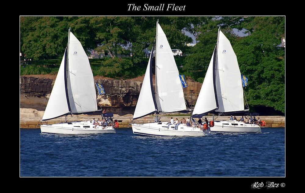 The Small Fleet by Rob Iles