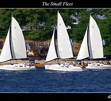 The Small Fleet by Rob Iles