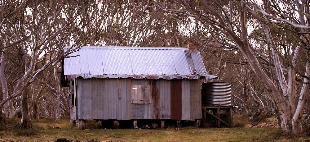 Wire Plains Hut by Mark Williamson